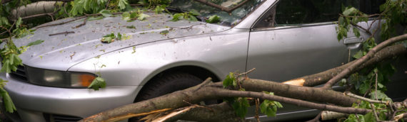 Is Your Vehicle Protected from a Hurricane?